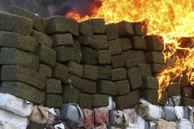 9 atos essenciais para o delegado promover a incineração de drogas apreendidas; veja os modelos