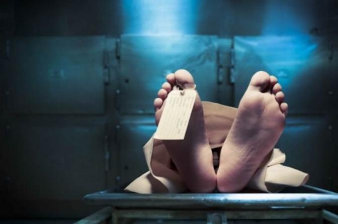 Relatório de Inquérito para o crime de Homicídio, nos moldes da Lei 12.830/13; versão 2019