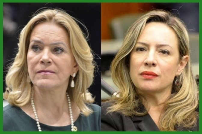 Delegada Adriana Accorsi e Lêda Borges querem divulgação do Disque 180 e Disque 100 em locais públicos