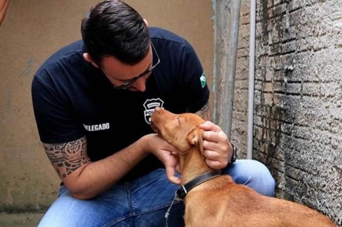 'Policiais chorando de revolta': a conexão internacional da quadrilha de rinha de cães que chocou o país